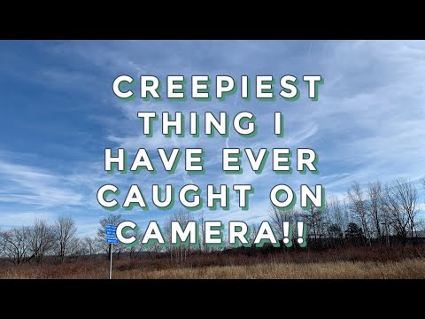 WHAT IS THIS????!!!!  CREEPIEST THING I HAVE EVER CAUGHT ON CAMERA!