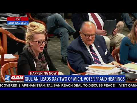 Michigan voter fraud witness: I don't know why anyone would write an affidavit just to write one