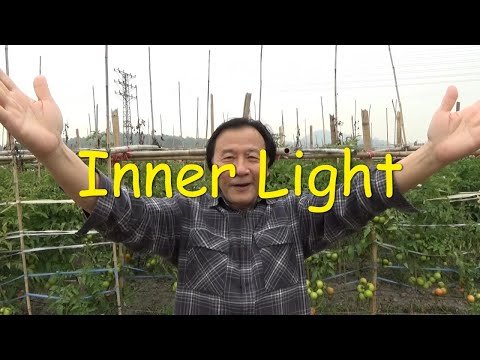 Inner Light Invisible Action Wuwei Tao Te Ching 47