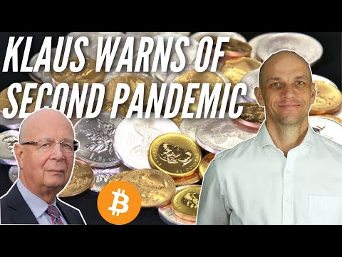 Gold, Silver, Bitcoin Market Update 20th Nov. Klaus Schwab's next warning