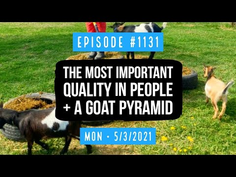 #1131 The​ Most Important Quality in People, And a Goat Pyramid