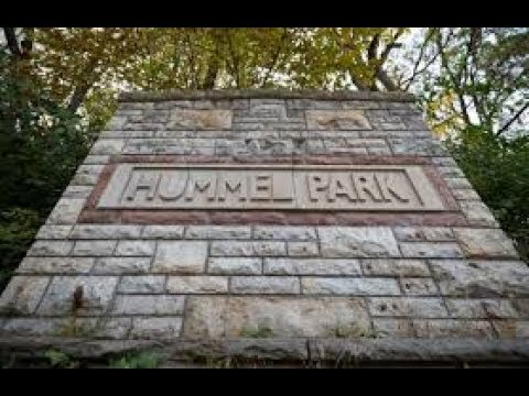 David Shurter Part 3 TALKS Hummel Park and Halloween TRIGGER WARNING