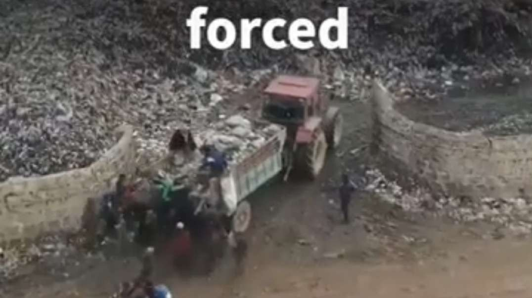 Syria- Displaced children run after rubbish truck scavenging for food.mp4