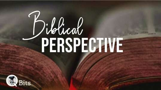 #269  //  BIBLICAL PERSPECTIVES