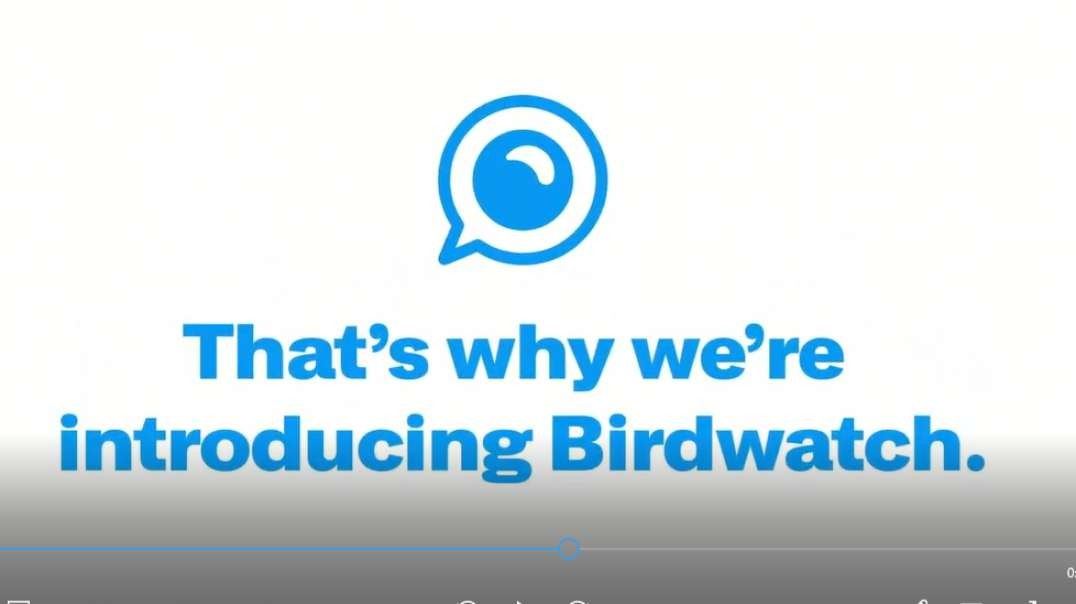 Parody Twitter Birdwatch Fact-Checking Propaganda Program Covid-19 Coronavirus Lockdowns Pandemic.mp4